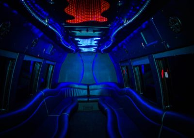 24 Passenger Limo Coach Interior